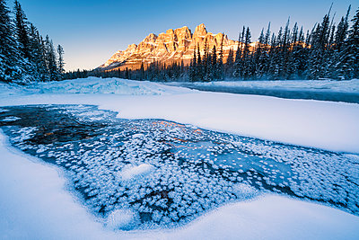 Castle Mountain in Winter, Banff National Park, Alberta, Canada - p651m2006453 by Tom Mackie