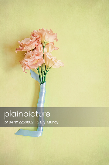 Pink lisianthus flowers with stem wrapped in blue ribbon on light green background - p1047m2259802 by Sally Mundy