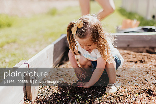 Young girl with dirty hands digs in backyard garden bed on a sunny day - p1166m2285818 by Cavan Images