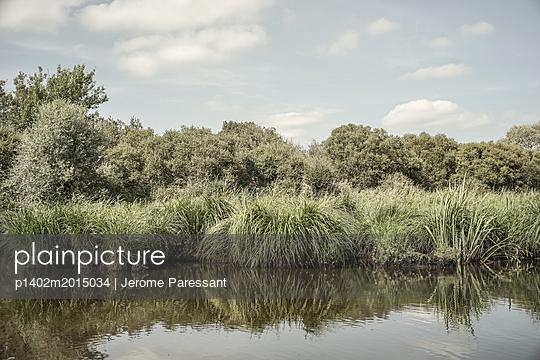 p1402m2015034 von Jerome Paressant