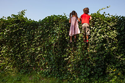 Children looking over a fence - p1231m1171255 by Iris Loonen