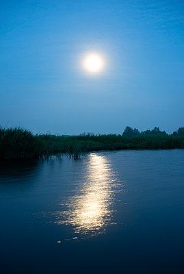 Sonne in der Abenddämmerung - p1132m2128085 von Mischa Keijser