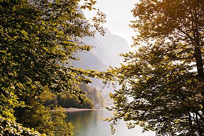 Kloen Valley, Switzerland - p1177m2076537 by Philip Frowein