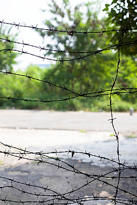Barbed wire - p586m859159 by Kniel Synnatzschke