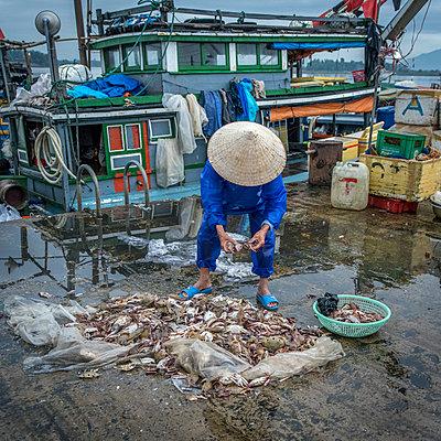 Fischmarkt am Pier in Vietnam - p393m1452256 von Manuel Krug