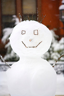 Snowman - p4342175f by Perfect Pictures