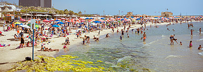 Beach in Tel Aviv - p741m929348 by Christof Mattes