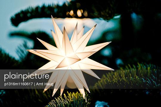 Leuchtender Weihnachtsstern, Deutschland - p1316m1160617 von Arnt Haug