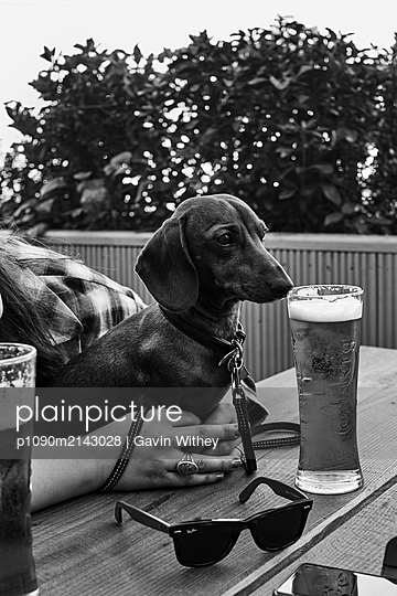 With a dog in the beergarden - p1090m2143028 by Gavin Withey