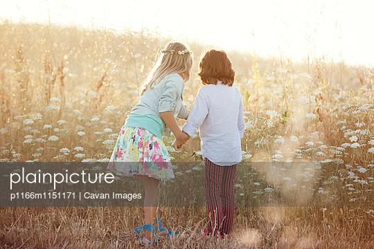p1166m1151171 von Cavan Images