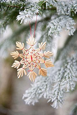 Christmas tree decoration - p533m1039575 by Böhm Monika