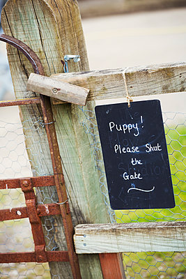 A chalk sign on a garden gate Puppy! Please shut the gate. - p1100m1178037 by Mint Images