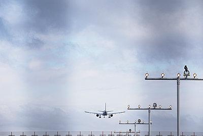 Flughafen Hamburg - p1222m1528695 von Jérome Gerull