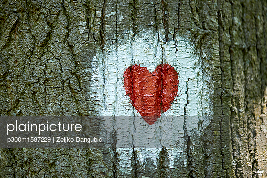 Heart painted on tree trunk - p300m1587229 von Zeljko Dangubic