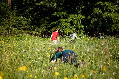 Drei Jungen spielen im hohen Gras - p1195m1138141 von Kathrin Brunnhofer