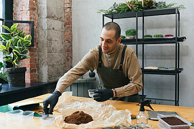 Man working on microgreens on table - p300m2181176 by Vasily Pindyurin