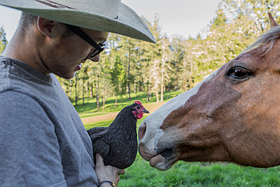 Caucasian farmer holding chicken face to face with horse - p555m1305254 by Eric Raptosh Photography