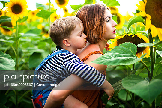 Woman standing in the sunflower field, holding her son on her back. - p1166m2096567 by Cavan Images