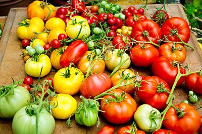 Pile of various tomato sorts - p300m2102871 von Dieter Heinemann