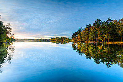 Trees reflecting in water - p312m1532898 by Mikael Svensson