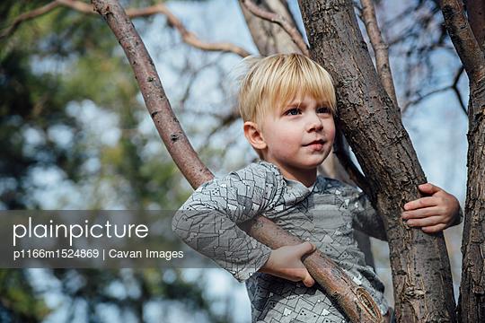 p1166m1524869 von Cavan Images