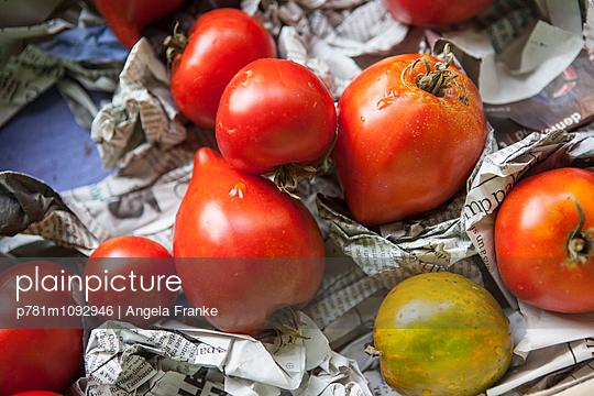 Tomatenernte - p781m1092946 von Angela Franke
