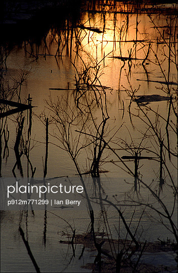 Louisiana - p912m771299 by Ian Berry