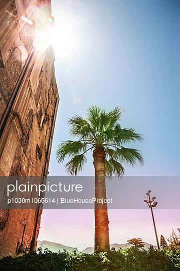 City palace - p1038m1065614 by BlueHouseProject
