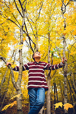 Low angle view of boy looking up while standing against maple tree in forest during autumn - p1166m2066424 by Cavan Images