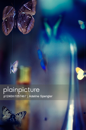 Hanging mobile - p1240m1057467 by Adeline Spengler