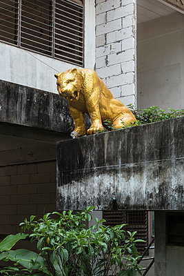 Gold painted sculpture of a beast of prey on the roof edge of a building - p728m2099852 by Peter Nitsch