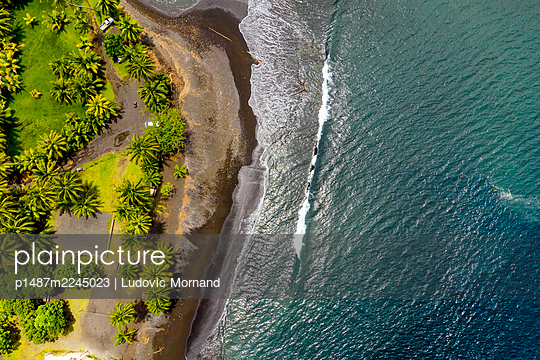Polynesia, Aerial view of Tahiti south peninsula with palm trees and waves - p1487m2245023 by Ludovic Mornand