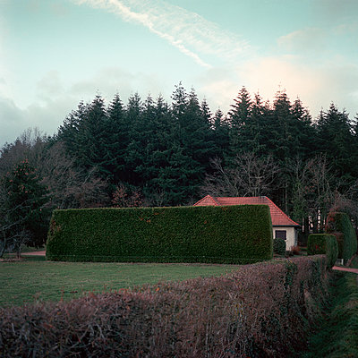 Residential building behind hedge in the countryside - p1287m2288702 by Christophe Darbelet
