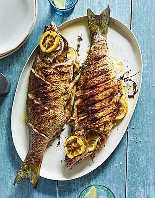 Fish dish - p1397m2054748 by David Prince