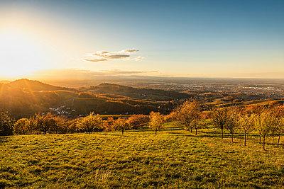 Sunlit landscape near Sasbachwalden, black forest, Baden-Wurttemberg, Germany - p429m2069373 by Manuel Sulzer