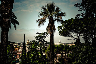 Rome seen through trees - p1088m854087 by Martin Benner