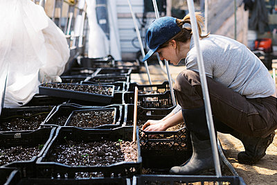 A young female farmer watering her seedlings in the greenhouse - p1166m2269682 by Cavan Images