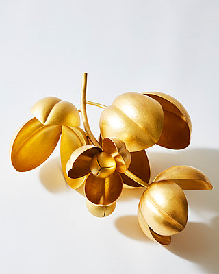 golden flower sculpture - p1379m1525387 by James Ransom