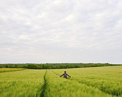 Organic farming - p1124m1150049 by Willing-Holtz
