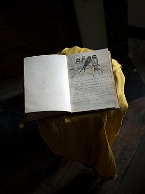 Altes Buch mit Zeichnung - p945m1477214 von aurelia frey