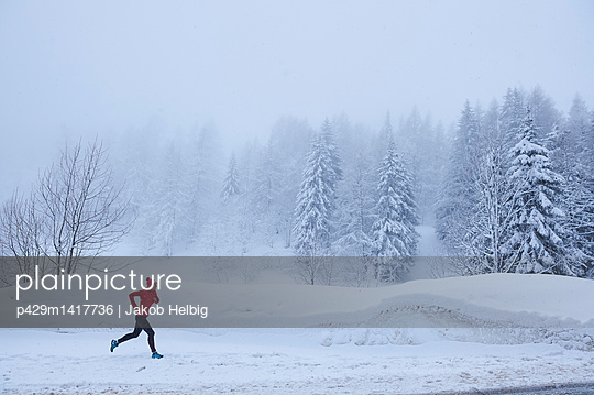 p429m1417736 von Jakob Helbig