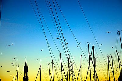Deutschland, Konstanz, Yachthafen - p1299m2297285 von Boris Schmalenberger