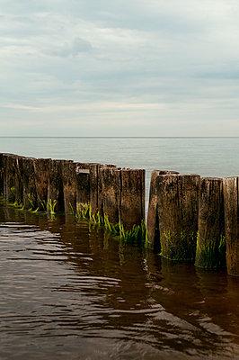 Ostseeküste - p470m1556419 von Ingrid Michel