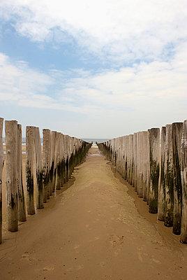 Coastal - p3830423 by visual2020vision