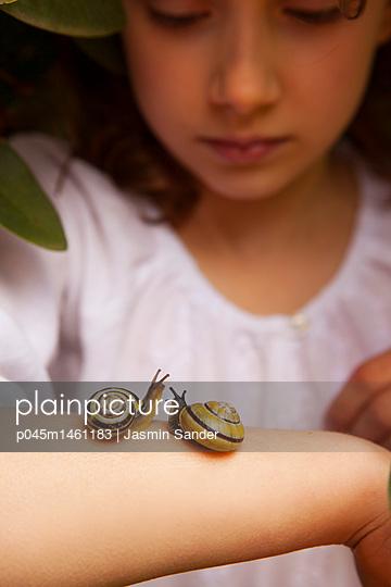 zwei Schnecken begrüßen sich auf dem Arm - p045m1461183 von Jasmin Sander