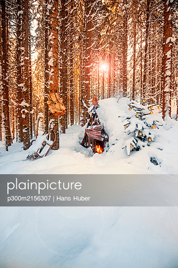 Austria, Salzburg,Altenmarkt-Zauchensee, Simple Christmas tree in front of snow-covered forest hut at sunset - p300m2156307 by Hans Huber