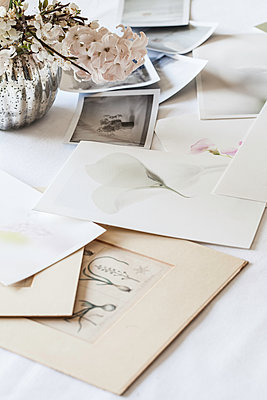 Still life with photographic prints - p1470m2054326 by julie davenport