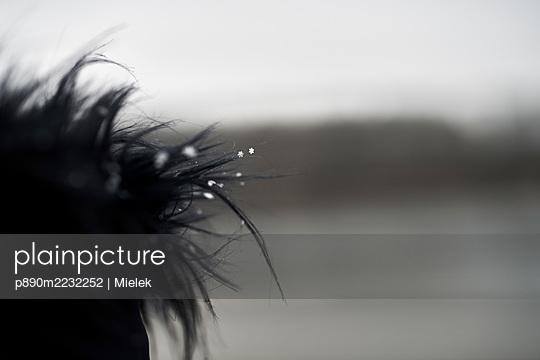 p890m2232252 by Mielek