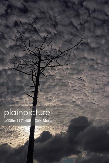 Unheimliche Wolken - p305m1171495 von Dirk Morla