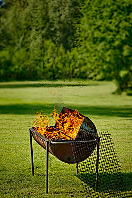 View of flamed barbecue on the lawn against blurred trees - p1025m789018f by Peo Quick